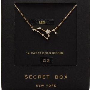 Jewelry - New Leo Constellation Necklace
